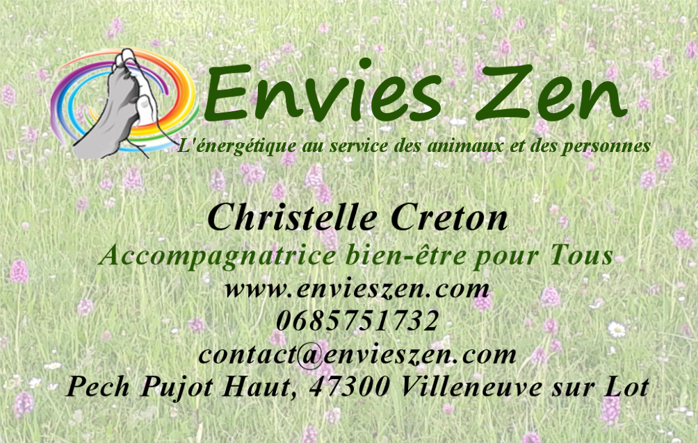 Carte visite definitive taille vistaprint
