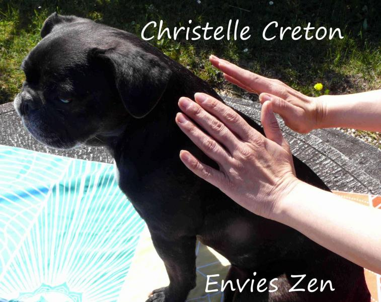 Christelle creton magnetisme animaux1