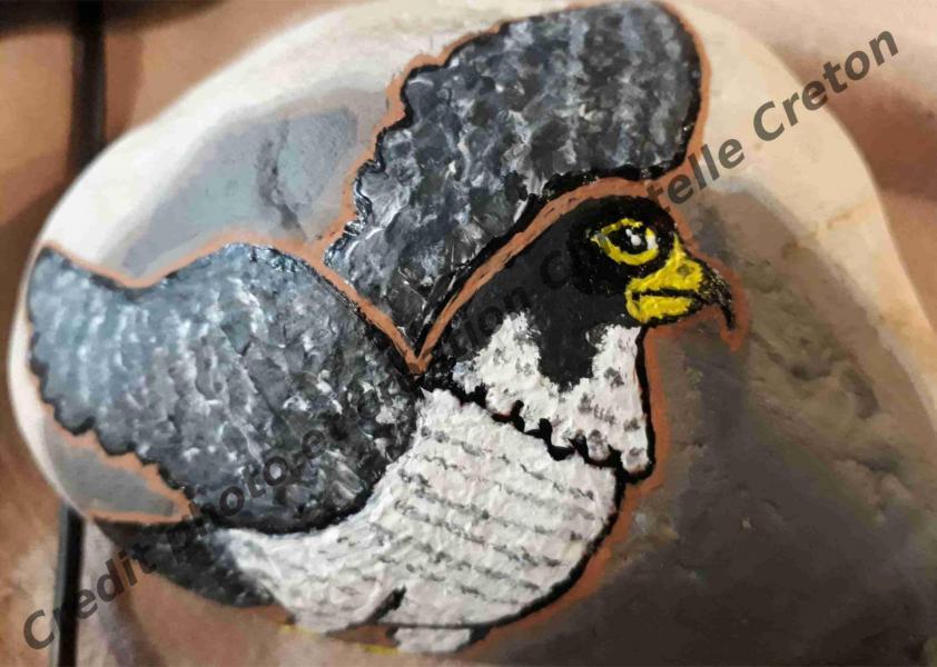 Galet peint energetique aigle
